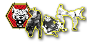 Dojo-96 Logo